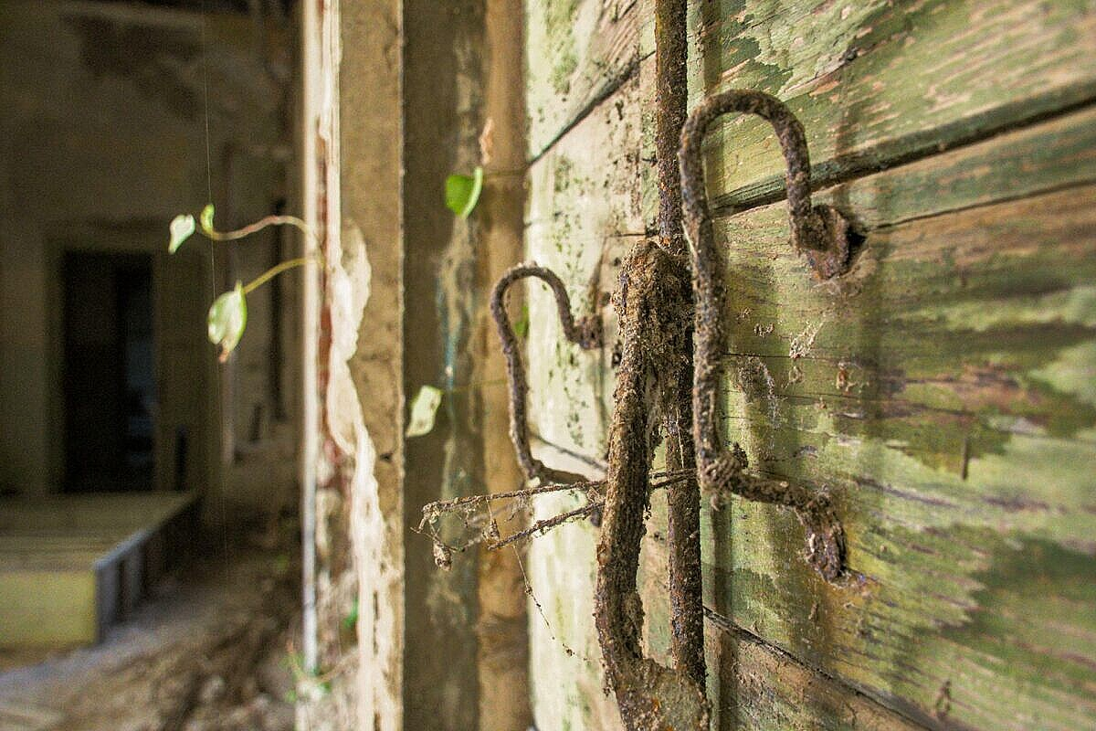Details of window shutters in the abandoned hospital on Poveglia